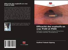 Capa do livro de Efficacité des explosifs en vrac P100 et P600