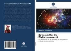 Bookcover of Beweismittel im Zivilprozessrecht
