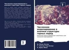 Copertina di Численное моделирование в анализе структуры горных пород