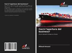 Copertina di Cos'è l'apertura del business?