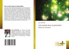Une luciole dans la pénombre kitap kapağı