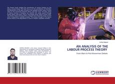 Bookcover of AN ANALYSIS OF THE LABOUR PROCESS THEORY