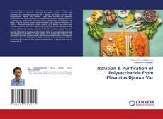 Обложка Isolation & Purification of Polysaccharide From Pleurotus Djamor Var