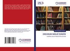 ERZURUM MÜLKÎ İDÂDÎSİ kitap kapağı