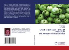 Bookcover of Effect of Different Forms of Potassium and Micronutrient on Guava
