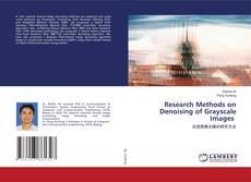 Borítókép a  Research Methods on Denoising of Grayscale Images - hoz