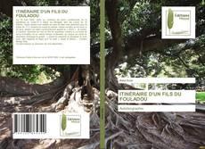 Bookcover of ITINÉRAIRE D'UN FILS DU FOULADOU