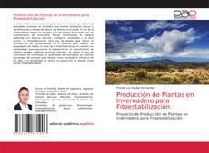 Bookcover of Producción de Plantas en Invernadero para Fitoestabilización