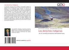 Обложка Los derechos indígenas