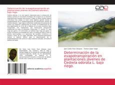 Обложка Determinación de la evapotranspiración en plantaciones jóvenes de Cedrela odorata L. bajo riego.