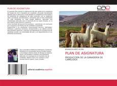 Borítókép a  PLAN DE ASIGNATURA - hoz
