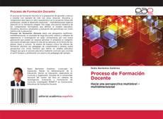 Bookcover of Proceso de Formación Docente