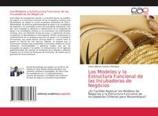Capa do livro de Los Modelos y la Estructura Funcional de las Incubadoras de Negócios