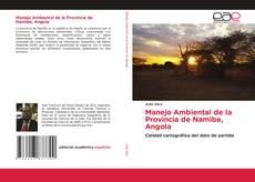 Manejo Ambiental de la Provincia de Namibe, Angola的封面