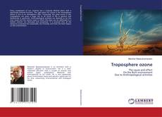 Borítókép a  Troposphere ozone - hoz