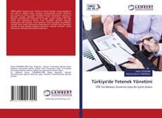 Türkiye'de Yetenek Yönetimi的封面