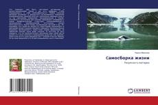 Bookcover of Cамосборка жизни