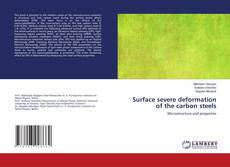 Обложка Surface severe deformation of the carbon steels