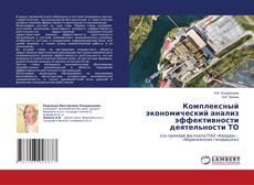Обложка Комплексный экономический анализ эффективности деятельности ТО