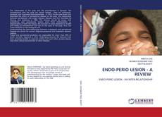 Bookcover of ENDO-PERIO LESION - A REVIEW