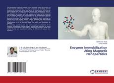 Bookcover of Enzymes Immobilization Using Magnetic Nanoparticles