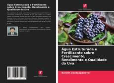 Bookcover of Água Estruturada e Fertilizante sobre Crescimento, Rendimento e Qualidade da Uva