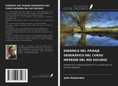Copertina di DINÁMICA DEL PAISAJE GEOGRÁFICO DEL CURSO INFERIOR DEL RÍO SUCURIÚ