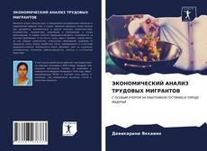 ЭКОНОМИЧЕСКИЙ АНАЛИЗ ТРУДОВЫХ МИГРАНТОВ的封面