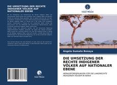 Capa do livro de DIE UMSETZUNG DER RECHTE INDIGENER VÖLKER AUF NATIONALER EBENE