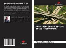 Bookcover of Permanent control system at the level of banks
