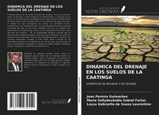Bookcover of DINÁMICA DEL DRENAJE EN LOS SUELOS DE LA CAATINGA