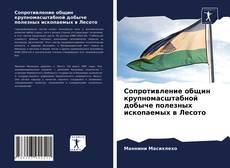Borítókép a  Сопротивление общин крупномасштабной добыче полезных ископаемых в Лесото - hoz
