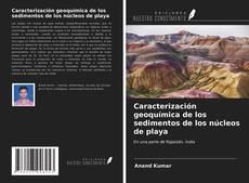 Bookcover of Caracterización geoquímica de los sedimentos de los núcleos de playa