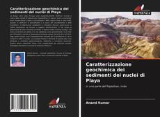 Bookcover of Caratterizzazione geochimica dei sedimenti dei nuclei di Playa