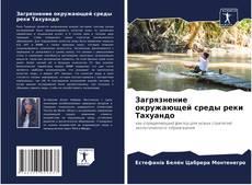 Bookcover of Загрязнение окружающей среды реки Тахуандо