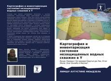 Copertina di Картография и инвентаризация состояния незащищенных водных скважин в Y