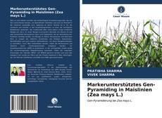 Markerunterstütztes Gen-Pyramiding in Maislinien (Zea mays L.)的封面