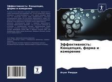 Couverture de Эффективность: Концепция, форма и измерение