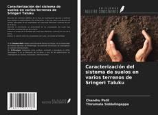 Bookcover of Caracterización del sistema de suelos en varios terrenos de Sringeri Taluku