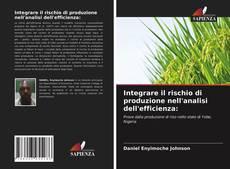 Copertina di Integrare il rischio di produzione nell'analisi dell'efficienza: