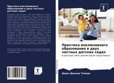 Обложка Практика инклюзивного образования в двух частных детских садах