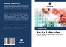 Bookcover of Sonstige Risikoanalyse