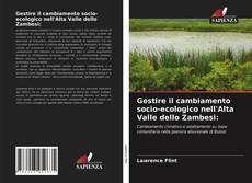 Buchcover von Gestire il cambiamento socio-ecologico nell'Alta Valle dello Zambesi: