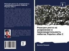 Bookcover of Реакция роста на укоренение и производительность побегов Populus alba C