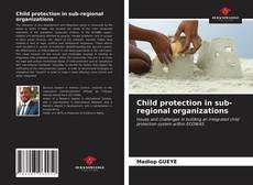 Child protection in sub-regional organizations的封面