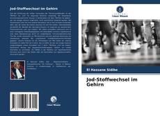 Jod-Stoffwechsel im Gehirn的封面