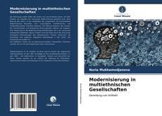 Modernisierung in multiethnischen Gesellschaften的封面