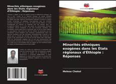 Bookcover of Minorités ethniques exogènes dans les États régionaux d'Éthiopie : Réponses