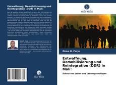Borítókép a  Entwaffnung, Demobilisierung und Reintegration (DDR) in Mali: - hoz