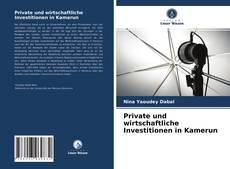 Private und wirtschaftliche Investitionen in Kamerun kitap kapağı